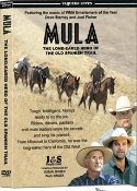 Mula the long-eared Hero of the Old Spanish Trail